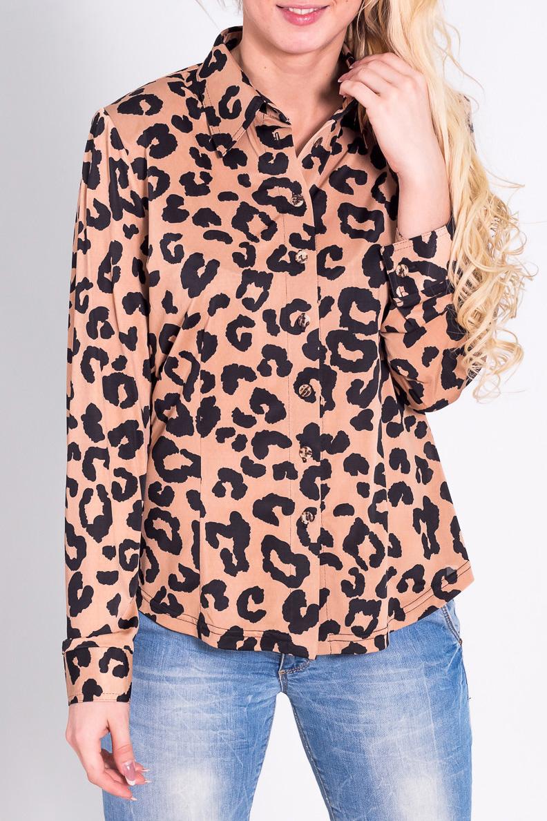 БлузкаБлузки<br>Красивая блузка с рубашечным воротником и длинными рукавами. Модель выполнена из приятного трикотажа с леопардовым принтом. Отличный выбор для повседневного гардероба.  Цвет: бежевый, черный  Рост девушки-фотомодели 170 см<br><br>Воротник: Рубашечный<br>Застежка: С пуговицами<br>По материалу: Трикотаж<br>По рисунку: Леопард,Цветные<br>По сезону: Весна,Всесезон,Зима,Лето,Осень<br>По силуэту: Полуприталенные<br>По стилю: Повседневный стиль<br>Рукав: Длинный рукав<br>Размер : 40,42,44,46,50,54<br>Материал: Холодное масло<br>Количество в наличии: 6