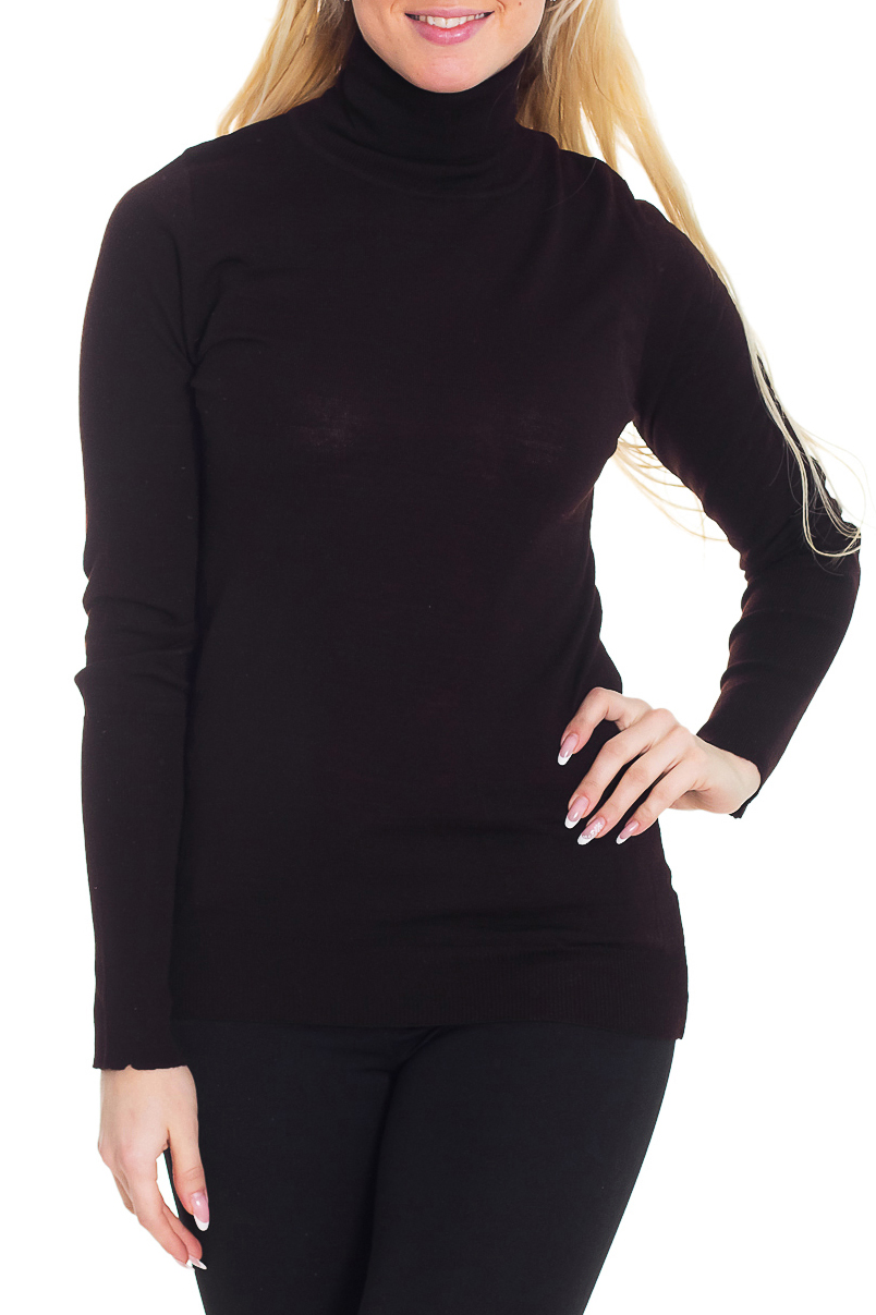 ВодолазкаВодолазки<br>Удобная водолазка приталенного силуэта с длинными рукавами. Модель выполнена из приятного трикотажа. Отличный выбор для повседневного гардероба.  Цвет: коричневый  Рост девушки-фотомодели 170 см.<br><br>Воротник: Стойка<br>По материалу: Трикотаж,Шерсть<br>По рисунку: Однотонные<br>По силуэту: Полуприталенные<br>По стилю: Повседневный стиль<br>Рукав: Длинный рукав<br>По сезону: Зима<br>Размер : 44,46,48,52<br>Материал: Трикотаж<br>Количество в наличии: 5