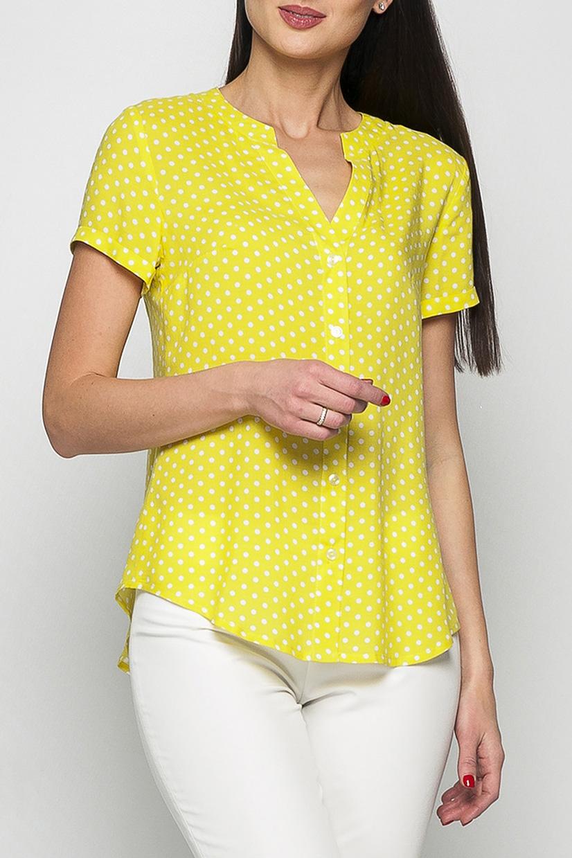 БлузкаБлузки<br>Классическая женская блузка из приятного к телу хлопка станет основой Вашего повседневного гардероба.   Параметры изделия:  44 размер: обхват груди - 100 см, длина рукава - 17 см, длина изделия - 65 см;  52 размер: обхват груди - 114 см, длина рукава - 18 см, длина изделия - 69 см.   Рост модели 175 см  Цвет: желтый.<br><br>По стилю: Повседневный стиль<br>Рукав: Короткий рукав<br>Застежка: С пуговицами<br>По материалу: Хлопок<br>По рисунку: В горошек,С принтом,Цветные<br>По силуэту: Полуприталенные<br>По элементам: С вырезом<br>По сезону: Лето,Весна,Зима,Осень,Всесезон<br>Горловина: Фигурная горловина<br>Размер : 42,44<br>Материал: Хлопок<br>Количество в наличии: 2