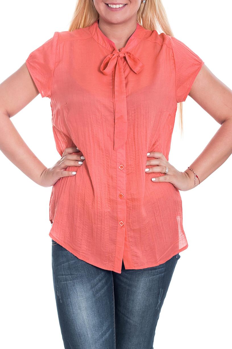 БлузкаБлузки<br>Удлиненная женская блузка с короткими рукавами. Модель выполнена из приятной блузочной ткани. Отличный выбор для повседневного гардероба. Ростовка 164 см.  Цвет: розовый  Рост девушки-фотомодели 170 см.<br><br>По материалу: Блузочная ткань,Тканевые<br>По образу: Город,Свидание<br>По рисунку: Однотонные<br>По сезону: Весна,Зима,Лето,Осень,Всесезон<br>По силуэту: Полуприталенные<br>По стилю: Повседневный стиль<br>Рукав: Короткий рукав<br>Размер : 50,52,56<br>Материал: Блузочная ткань<br>Количество в наличии: 6