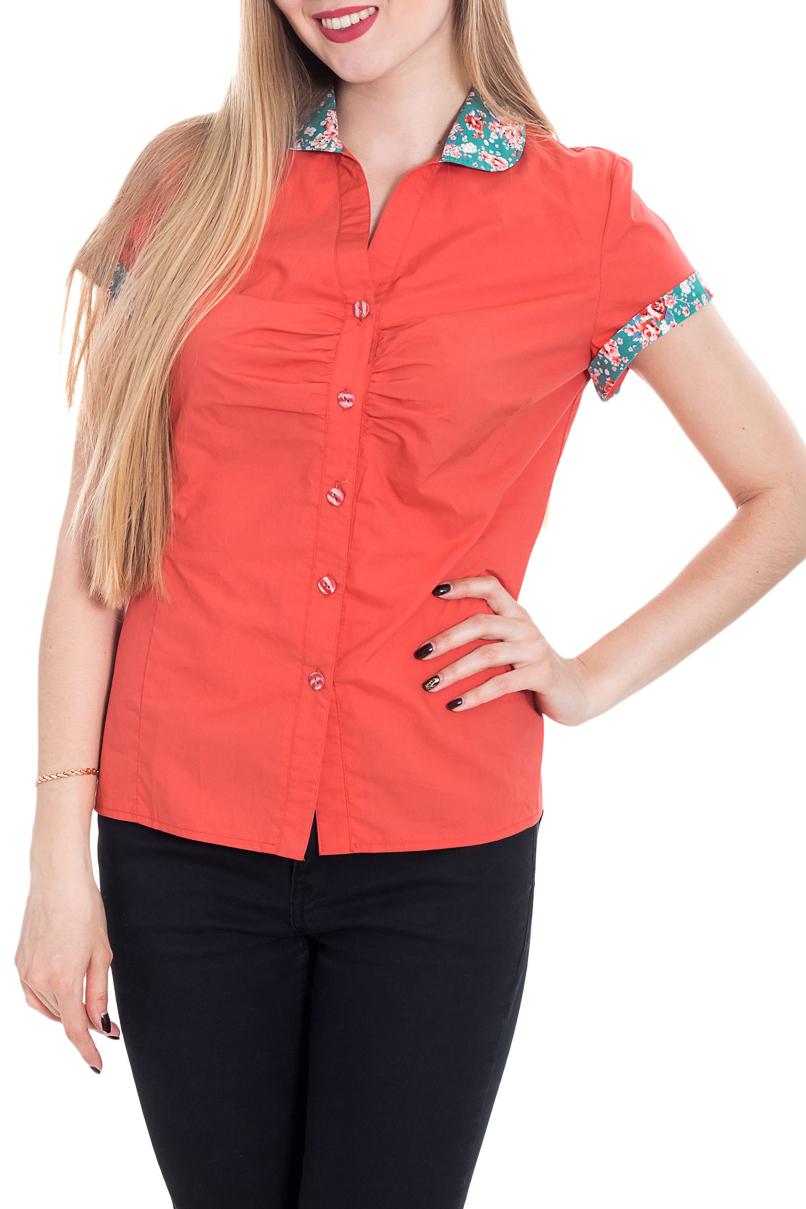 РубашкаРубашки<br>Классическая женская рубашка из приятного к телу хлопка станет основой Вашего повседневного гардероба. Застежка - пуговицы.  Цвет: кораллово-оранжевый.  Рост девушки-фотомодели 180 см<br><br>Воротник: Рубашечный,Стояче-отложной<br>Горловина: V- горловина<br>Застежка: С пуговицами<br>По материалу: Хлопок<br>По образу: Город,Свидание<br>По рисунку: Однотонные<br>По сезону: Весна,Зима,Лето,Осень,Всесезон<br>По силуэту: Приталенные<br>По стилю: Летний стиль,Повседневный стиль<br>По элементам: С воротником,С декором,С манжетами<br>Рукав: Короткий рукав<br>Размер : 44,46<br>Материал: Хлопок<br>Количество в наличии: 2
