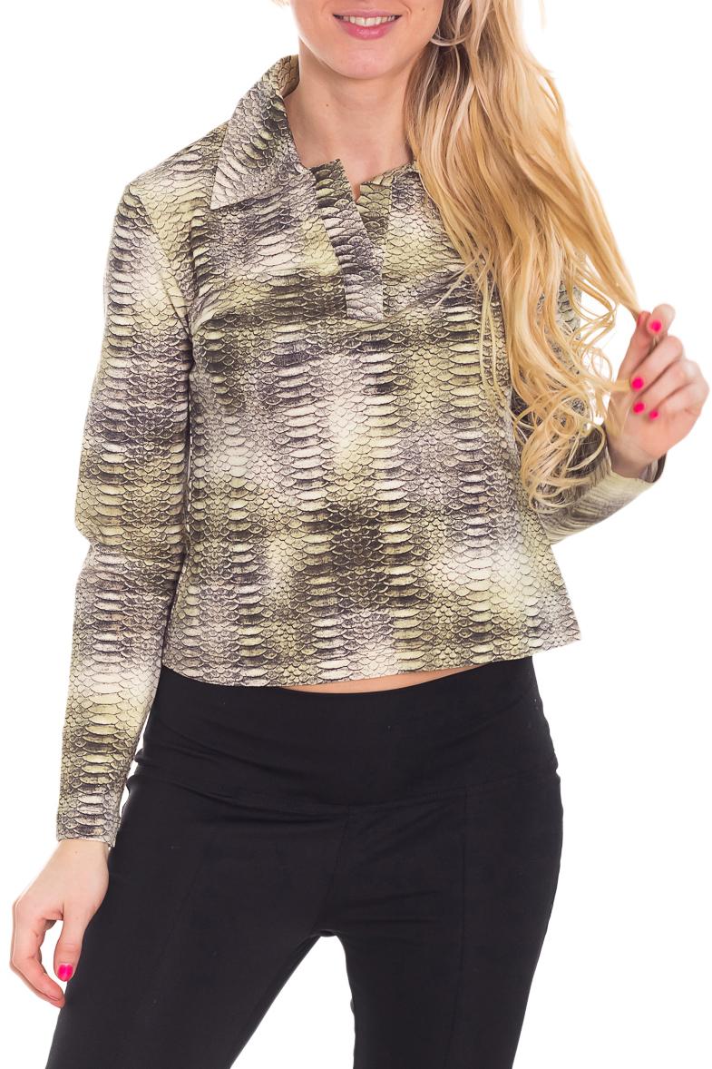 БлузкаБлузки<br>Укороченная блузка с длинными рукавами. Модель выполнена из приятного материала. Отличный выбор для любого случая.  Цвет: серый, бежевый, зеленый  Рост девушки-фотомодели 170 см<br><br>Воротник: Отложной<br>По материалу: Вискоза<br>По образу: Город,Свидание<br>По рисунку: Рептилия,С принтом,Цветные<br>По сезону: Весна,Зима,Лето,Осень,Всесезон<br>По силуэту: Полуприталенные<br>По стилю: Повседневный стиль<br>Рукав: Длинный рукав<br>Размер : 44<br>Материал: Вискоза<br>Количество в наличии: 2