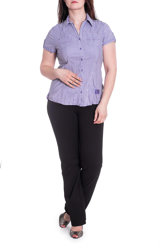 РубашкаРубашки<br>Классическая рубашка в клетку с короткими рукавами. Модель выполнена из приятного материала. Отличный выбор для повседневного гардероба.В изделии использованы цвета: сиреневый, белыйРост девушки-фотомодели 180 см.<br><br>Застежка: С пуговицами<br>Рукав: Короткий рукав<br>Материал: Трикотаж<br>Рисунок: В клетку,С принтом,Цветные<br>Сезон: Весна,Всесезон,Зима,Лето,Осень<br>Силуэт: Приталенные<br>Стиль: Повседневный стиль,Летний стиль<br>Элементы: С патами<br>Воротник: Стояче-отложной<br>Горловина: V- горловина<br>Размер : 48-50<br>Материал: Трикотаж<br>Количество в наличии: 1