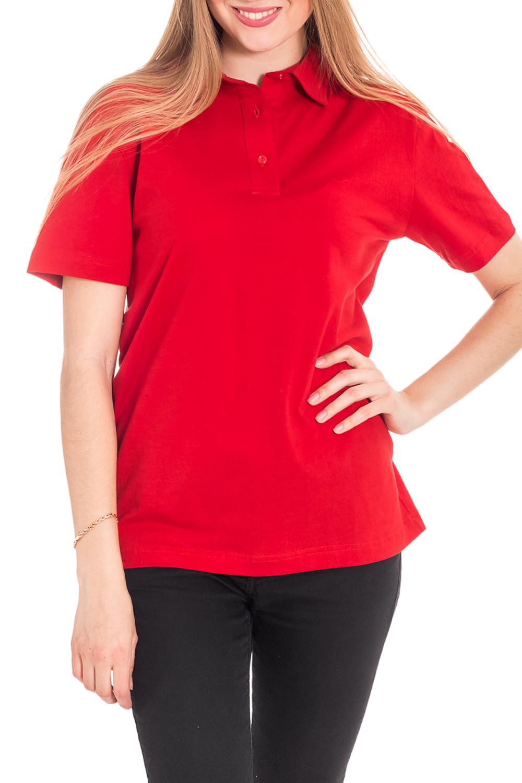 ФутболкаФутболки<br>Женская футболка-поло с короткими рукавами. Модель выполнена из хлопкового материала. Отличный выбор для повседневного гардероба.  Цвет: красный  Рост девушки-фотомодели 180 см<br><br>Воротник: Рубашеный<br>По материалу: Трикотаж,Хлопок<br>По образу: Город,Спорт<br>По рисунку: Однотонные<br>По сезону: Весна,Зима,Лето,Осень,Всесезон<br>По силуэту: Полуприталенные<br>По стилю: Повседневный стиль,Спортивный стиль<br>По форме: Футболка - поло<br>Рукав: Короткий рукав<br>Размер : 42-44<br>Материал: Трикотаж<br>Количество в наличии: 1