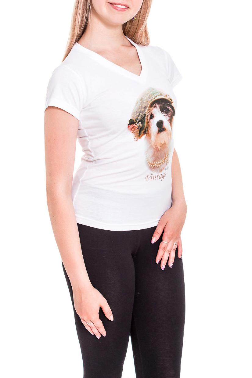 ФутболкаФутболки<br>Однотонная футболка с ярким принтом. Модель выполнена из мягкого трикотажа. Отличный выбор для повседневного гардероба.  В изделии использованы цвета: белый, бежевый и др.  Рост девушки-фотомодели 170 см.<br><br>Горловина: V- горловина<br>По материалу: Трикотаж,Хлопок<br>По образу: Город<br>По рисунку: Животные мотивы,С принтом,Цветные<br>По сезону: Весна,Зима,Лето,Осень,Всесезон<br>По силуэту: Приталенные<br>По стилю: Повседневный стиль<br>По форме: Классические<br>Рукав: Короткий рукав<br>Размер : 44,46,48<br>Материал: Трикотаж<br>Количество в наличии: 5