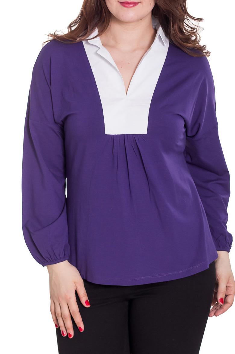 БлузкаБлузки<br>Красивая блузка с длинными рукавами. Модель выполнена из мягкой вискозы. Отличный выбор для повседневного гардероба.  Цвет: фиолетовый, белый  Рост девушки-фотомодели 180 см<br><br>Горловина: V- горловина<br>По материалу: Вискоза,Трикотаж<br>По образу: Город,Свидание<br>По рисунку: Однотонные<br>По сезону: Весна,Зима,Лето,Осень,Всесезон<br>По силуэту: Свободные<br>По стилю: Повседневный стиль<br>Рукав: Длинный рукав<br>Размер : 50<br>Материал: Вискоза<br>Количество в наличии: 1