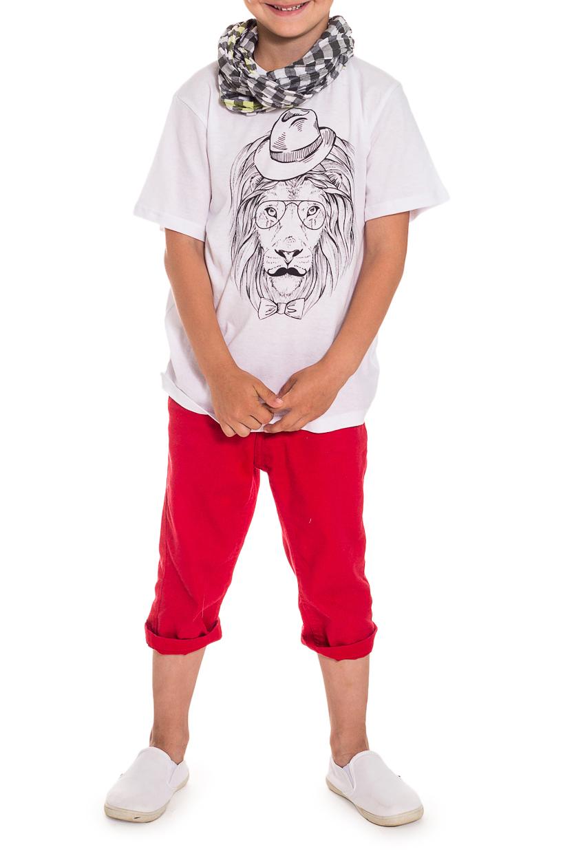 ФутболкаФутболки<br>Хлопковая футболка для мальчика  Размер 122 соответствует росту 117-122 см Размер 128 соответствует росту 123-128 см Размер 134 соответствует росту 129-134 см   Цвет: белый<br><br>Горловина: С- горловина<br>По длине: Удлиненные<br>По материалу: Хлопковые<br>По образу: Повседневные<br>По рисунку: Однотонные,С принтом (печатью)<br>По сезону: Лето,Всесезон<br>По силуэту: Полуприталенные<br>Рукав: Короткий рукав<br>По возрасту: Школьные ( от 7 до 13 лет),Дошкольные ( от 3 до 7 лет)<br>Размер : 122<br>Материал: Хлопок<br>Количество в наличии: 2