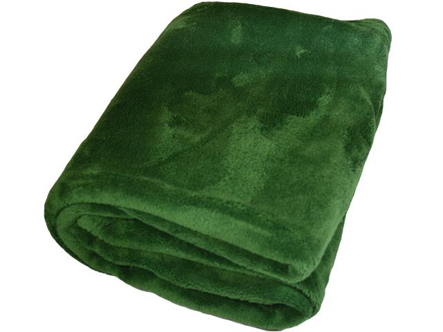 ПледПледы<br>Лёгкие нарядные пледы, универсальные текстильные изделия, согревает в сырую погоду дома или в поездке, в туристическом походе, гостинице, косметическом салоне. А так же украшают интерьер.  Цвет: зеленый<br><br>Отделка края: Отделка строчкой<br>По материалу: Трикотажные<br>По размеру: Евро<br>По рисунку: Однотонные<br>Размер : 220*240<br>Материал: Велсофт<br>Количество в наличии: 1