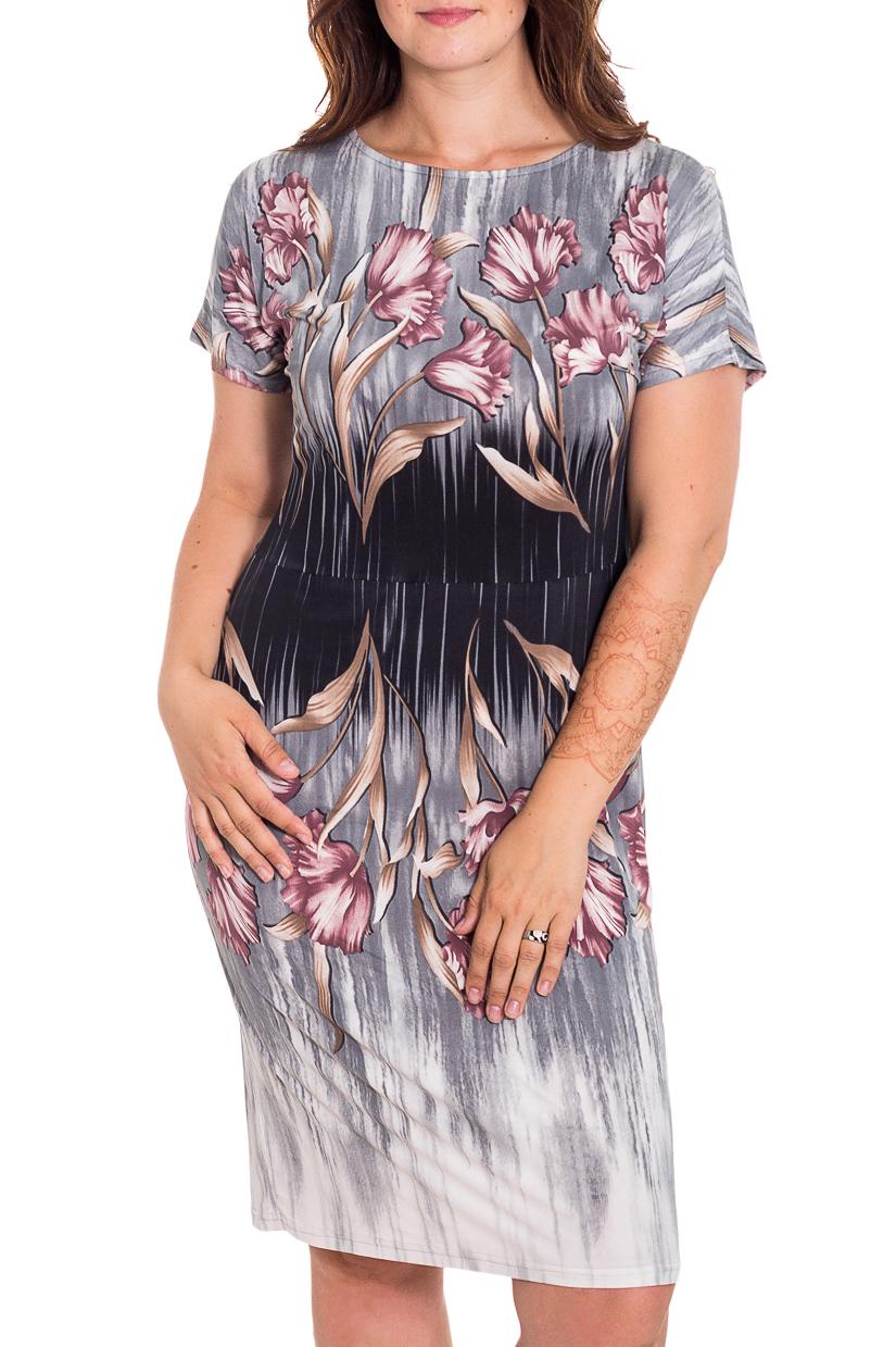 ПлатьеПлатья<br>Летнее платье длиной до колена. Простая модель, но зато какой нежный цветочный принт Отличный выбор для повседневного гардероба.  В изделии использованы цвета: серый, белый, синий, розовый и др.  Рост девушки-фотомодели 180 см.<br><br>Горловина: С- горловина<br>По длине: До колена<br>По материалу: Трикотаж<br>По рисунку: Растительные мотивы,С принтом,Цветные,Цветочные<br>По силуэту: Полуприталенные<br>По стилю: Повседневный стиль<br>По форме: Платье - футляр<br>Рукав: Короткий рукав<br>По сезону: Лето<br>Размер : 46,48<br>Материал: Холодное масло<br>Количество в наличии: 2