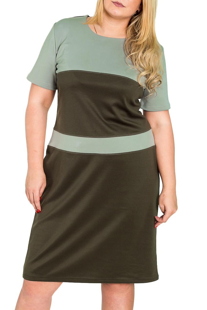 ПлатьеПлатья<br>Прелестное платье с круглой горловиной и короткими рукавами. Модель выполнена из плотного трикотажа. Отличный выбор для повседневного гардероба.  Цвет: зеленый  Рост девушки-фотомодели 170 см<br><br>Горловина: С- горловина<br>По длине: Ниже колена,До колена<br>По материалу: Трикотаж<br>По образу: Город,Офис,Свидание<br>По рисунку: Цветные<br>По силуэту: Полуприталенные<br>По стилю: Офисный стиль,Повседневный стиль,Классический стиль,Кэжуал<br>По форме: Платье - футляр<br>Рукав: Короткий рукав<br>По сезону: Осень,Весна<br>Размер : 50,52,54,56<br>Материал: Джерси<br>Количество в наличии: 2