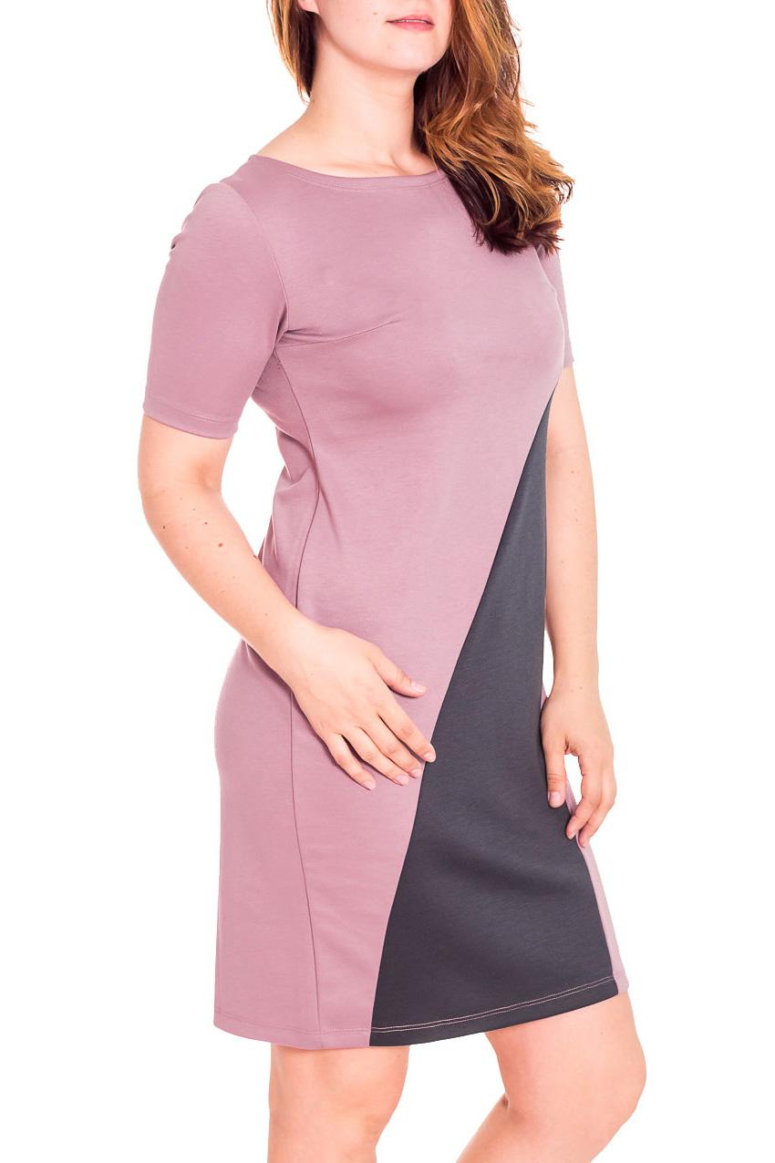 ПлатьеПлатья<br>Повседневное женское платье с круглой горловиной и короткими рукавами. Модель выполнена из приятного трикотажа. Отличный выбор для любого случая.  Цвет: розовый, серый  Рост девушки-фотомодели 180 см.<br><br>Горловина: С- горловина<br>По длине: До колена<br>По материалу: Вискоза,Трикотаж<br>По рисунку: Цветные<br>По сезону: Весна,Осень<br>По стилю: Повседневный стиль,Классический стиль,Кэжуал<br>По форме: Платье - футляр<br>Рукав: До локтя,Короткий рукав<br>По силуэту: Приталенные<br>Размер : 46,48,50,52,54<br>Материал: Трикотаж<br>Количество в наличии: 5