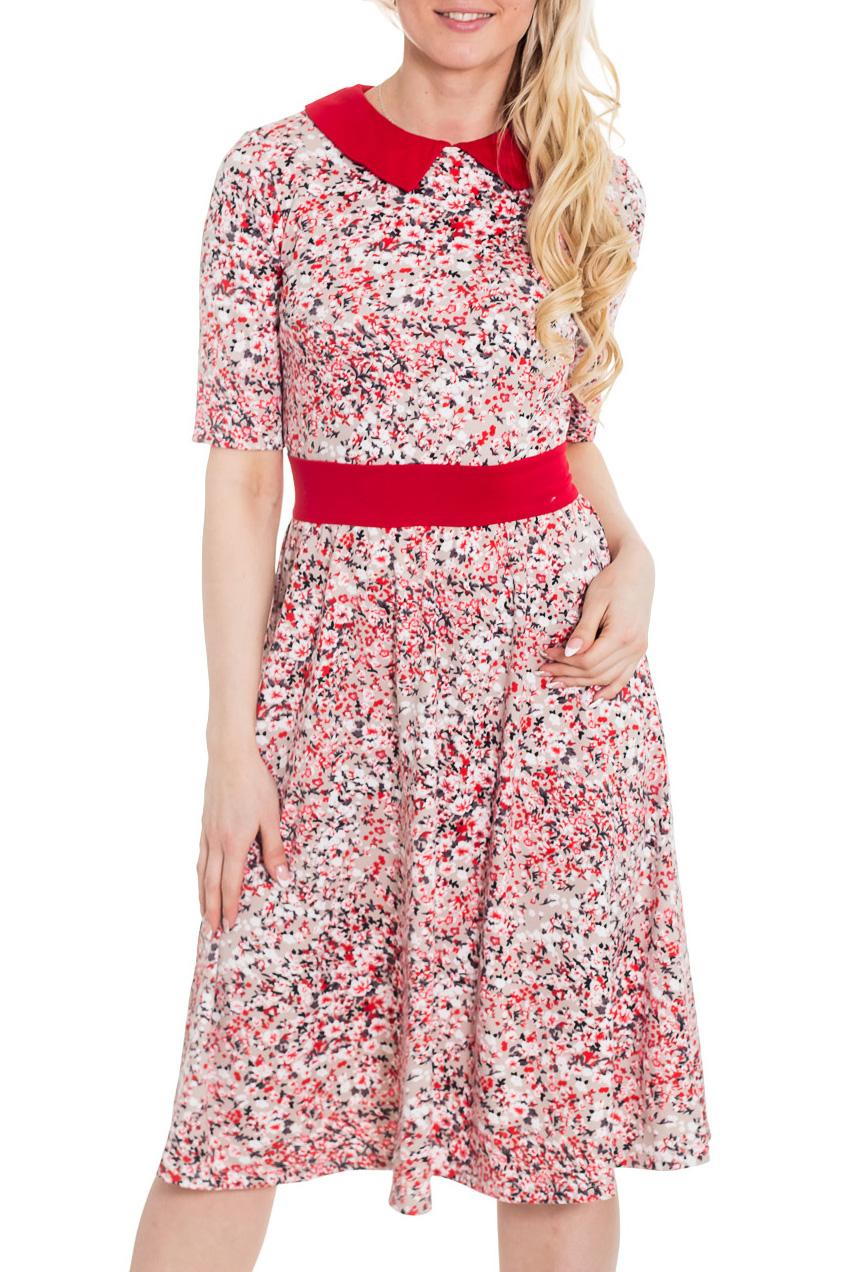 LacyWear Платье S(43)-ATS