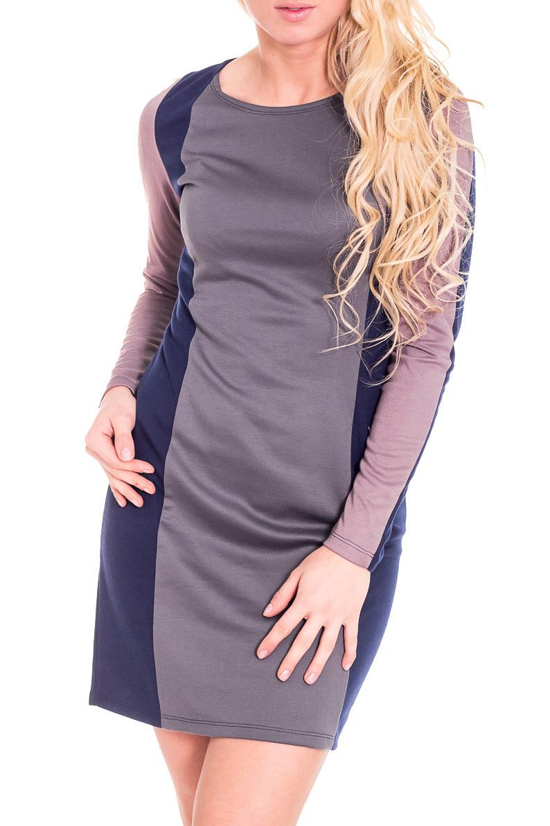 ПлатьеПлатья<br>Красивое женское платье с круглой горловиной и длинными рукавами. Модель выполнена из плотного трикотажа. Отличный выбор для повседневного гардероба.  Цвет: синий, серый, розовый  Рост девушки-фотомодели 170 см.<br><br>Горловина: С- горловина<br>По длине: До колена<br>По материалу: Вискоза,Трикотаж<br>По образу: Город,Свидание<br>По рисунку: Цветные<br>По сезону: Весна,Осень<br>По силуэту: Полуприталенные<br>По стилю: Повседневный стиль<br>По форме: Платье - футляр<br>Рукав: Длинный рукав<br>Размер : 46<br>Материал: Джерси<br>Количество в наличии: 1