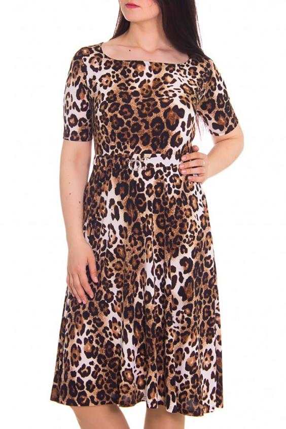 ПлатьеПлатья<br>Женское платье с круглой горловиной и короткими рукавами. Модель выполнена из приятного трикотажа. Отличный выбор для повседневного гардероба.  Цвет: коричневый, бежевый  Рост девушки-фотомодели - 180 см<br><br>По рисунку: Леопард,Цветные<br>По сезону: Весна,Осень<br>По силуэту: Полуприталенные<br>Рукав: Короткий рукав<br>По материалу: Трикотаж<br>По стилю: Повседневный стиль<br>По форме: Платье - футляр<br>Горловина: Квадратная горловина<br>По длине: До колена<br>По элементам: С поясом<br>Размер : 50<br>Материал: Холодное масло<br>Количество в наличии: 1