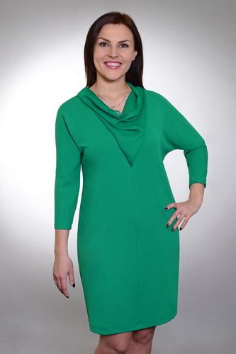 ПлатьеПлатья<br>Однотонное платье с интересной горловиной качель и рукавами 3/4. Модель выполнена из приятного трикотажа. Отличный выбор для повседневного и делового гардероба.  Цвет: зеленый  Ростовка изделия 170 см.<br><br>По образу: Город,Офис,Свидание<br>По стилю: Повседневный стиль,Офисный стиль<br>По материалу: Трикотаж<br>По рисунку: Однотонные<br>По сезону: Весна,Осень<br>По силуэту: Приталенные<br>По элементам: С декором<br>По форме: Платье - футляр<br>По длине: До колена<br>Рукав: Рукав три четверти<br>Горловина: Качель<br>Размер: 50,52,54<br>Материал: 95% полиэстер 5% эластан<br>Количество в наличии: 1