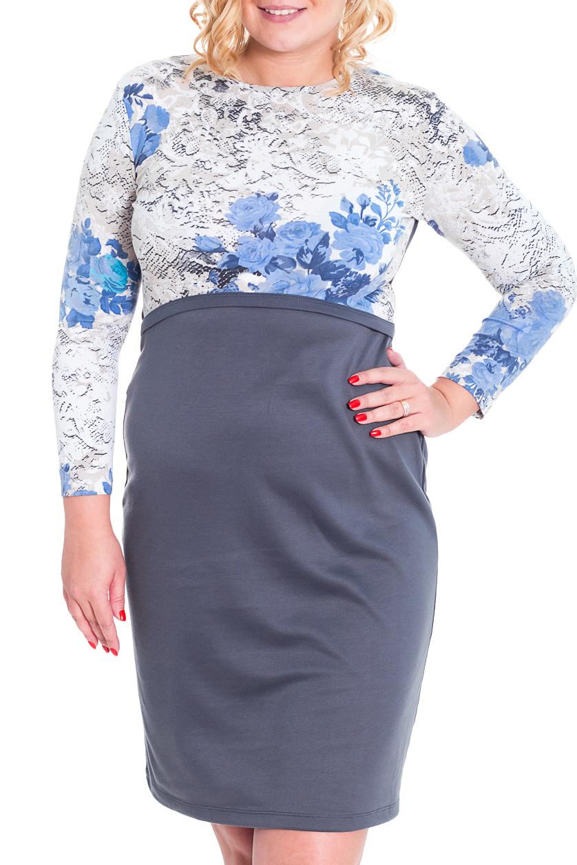 ПлатьеПлатья<br>Замечательное платье с длинными рукавами. Модель выполнена из мягкой вискозы. Отличный выбор для выхода в свет. На спинке декоративный вырез.  Цвет: серый, белый, голубой  Рост девушки-фотомодели 170 см.<br><br>Горловина: С- горловина<br>По длине: До колена<br>По материалу: Вискоза,Трикотаж<br>По рисунку: Растительные мотивы,С принтом,Цветные,Цветочные<br>По сезону: Весна,Осень,Зима<br>По силуэту: Полуприталенные<br>По стилю: Повседневный стиль<br>По форме: Платье - футляр<br>По элементам: С вырезом,С открытой спиной<br>Рукав: Длинный рукав<br>Размер : 48<br>Материал: Трикотаж<br>Количество в наличии: 1