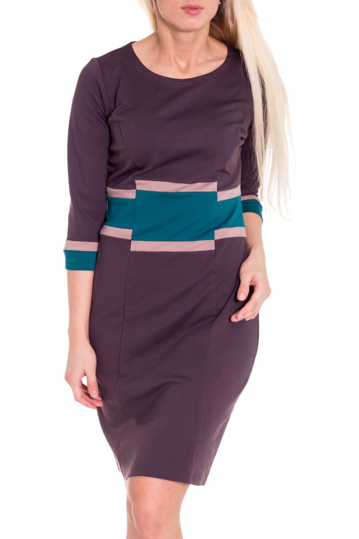 ПлатьеПлатья<br>Замечательное платье с круглой горловиной и рукавами 3/4. Модель выполнена из приятного трикотажа. Отличный выбор для повседневного гардероба.   Цвет: коричнево-фиолетовый, голубой  Рост девушки-фотомодели 170 см.<br><br>Горловина: С- горловина<br>По длине: До колена<br>По материалу: Вискоза,Трикотаж<br>По образу: Город,Офис,Свидание<br>По рисунку: Цветные<br>По силуэту: Полуприталенные<br>По стилю: Офисный стиль,Повседневный стиль<br>По форме: Платье - футляр<br>Рукав: Рукав три четверти<br>По сезону: Осень,Весна<br>Размер : 44,46,52<br>Материал: Джерси<br>Количество в наличии: 3