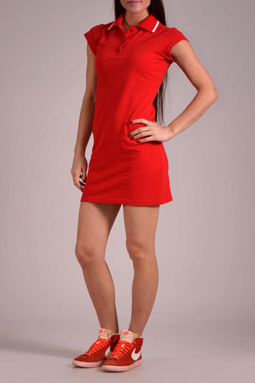 ПлатьеПлатья<br>Повседневное спортивное платье из приятного трикотажа. Рубашечный воротник. Цвет: красный.<br><br>Воротник: Рубашечный,Стояче-отложной<br>По материалу: Трикотаж,Хлопок<br>По образу: Город,Свидание,Спорт<br>По рисунку: Однотонные<br>По силуэту: Полуприталенные<br>По стилю: Повседневный стиль<br>По форме: Платье - рубашка<br>По элементам: С воротником,С декором,С пуговицами<br>Рукав: Короткий рукав<br>По сезону: Лето<br>Размер : 44,46<br>Материал: Трикотаж<br>Количество в наличии: 2