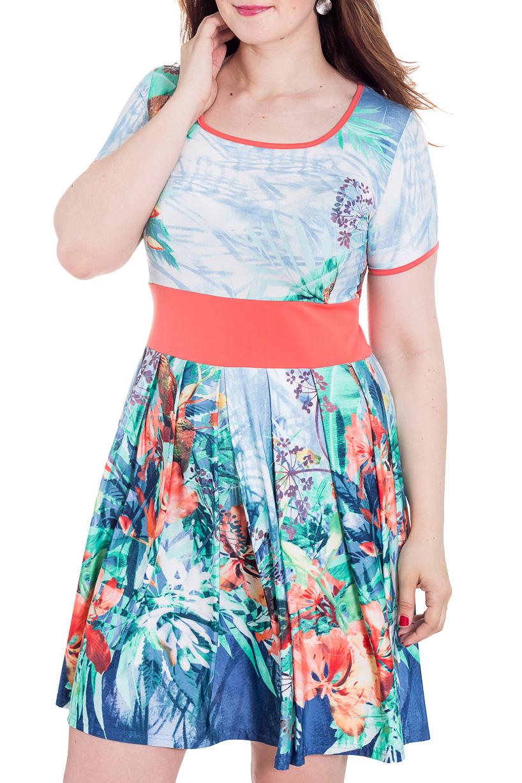 ПлатьеПлатья<br>Яркое летнее платье. Модель выполнена из приятного материала. Отличный выбор для повседневного гардероба.  Цвет: голубой, коралловый, синий  Рост девушки-фотомодели 180 см.<br><br>Горловина: С- горловина<br>По длине: До колена<br>По материалу: Вискоза,Трикотаж<br>По рисунку: Растительные мотивы,С принтом,Цветные,Цветочные<br>По силуэту: Приталенные<br>По стилю: Повседневный стиль<br>По форме: Платье - трапеция<br>Рукав: Короткий рукав<br>По сезону: Лето<br>Размер : 46,52<br>Материал: Холодное масло<br>Количество в наличии: 3