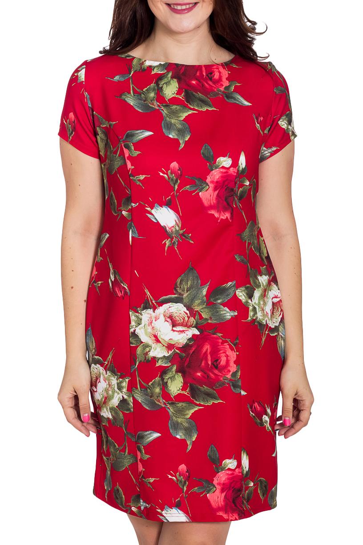 ПлатьеПлатья<br>Цветное платье с круглой горловиной и короткими рукавами. Модель выполнена из приятного трикотажа. Отличный выбор для любого случая.   В изделии использованы цвета: красный, зеленый и др.  Рост девушки-фотомодели 180 см<br><br>Горловина: С- горловина<br>По длине: До колена<br>По материалу: Тканевые<br>По образу: Город,Свидание<br>По рисунку: Растительные мотивы,С принтом,Цветные,Цветочные<br>По сезону: Лето,Осень,Весна<br>По силуэту: Полуприталенные<br>По стилю: Нарядный стиль,Повседневный стиль<br>По форме: Платье - футляр<br>По элементам: С разрезом<br>Разрез: Короткий,Шлица<br>Рукав: Короткий рукав<br>Размер : 46,48,50<br>Материал: Плательная ткань<br>Количество в наличии: 3