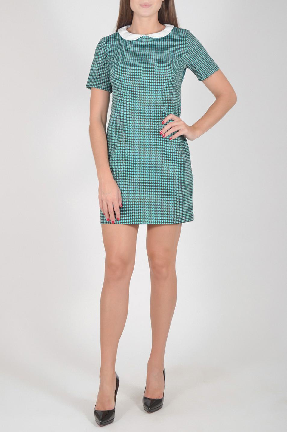 ПлатьеПлатья<br>Цветное платье с контрастным воротничком и короткими рукавами. Модель выполнена из мягкой вискозы. Отличный выбор для повседневного гардероба.  Длина изделия по спинке до 48 размера - 85 см., от 48 размера - 93 см.  В изделии использованы цвета: бирюзовый и др.  Рост девушки-фотомодели 170 см.  Параметры размеров: 42 размер - обхват груди 84 см., обхват талии 66 см., обхват бедер 92 см. 44 размер - обхват груди 88 см., обхват талии 70 см., обхват бедер 96 см. 46 размер - обхват груди 92 см., обхват талии 74 см., обхват бедер 100 см. 48 размер - обхват груди 96 см., обхват талии 78 см., обхват бедер 104 см. 50 размер - обхват груди 100 см., обхват талии 82 см., обхват бедер 108 см. 52 размер - обхват груди 104 см., обхват талии 86 см., обхват бедер 112 см. 54 размер - обхват груди 108 см., обхват талии 91 см., обхват бедер 116 см. 56 размер - обхват груди 112 см., обхват талии 95 см., обхват бедер 120 см. 58 размер - обхват груди 116 см., обхват талии 100 см., обхват бедер 124 см. 60 размер - обхват груди 120 см., обхват талии 105 см., обхват бедер 128 см.<br><br>Воротник: Отложной<br>Горловина: С- горловина<br>По длине: До колена<br>По материалу: Вискоза<br>По рисунку: С принтом,Цветные<br>По силуэту: Полуприталенные<br>По стилю: Повседневный стиль<br>По форме: Платье - футляр<br>Рукав: Короткий рукав<br>По сезону: Осень,Весна<br>Размер : 44,46,48,50,52<br>Материал: Трикотаж<br>Количество в наличии: 14