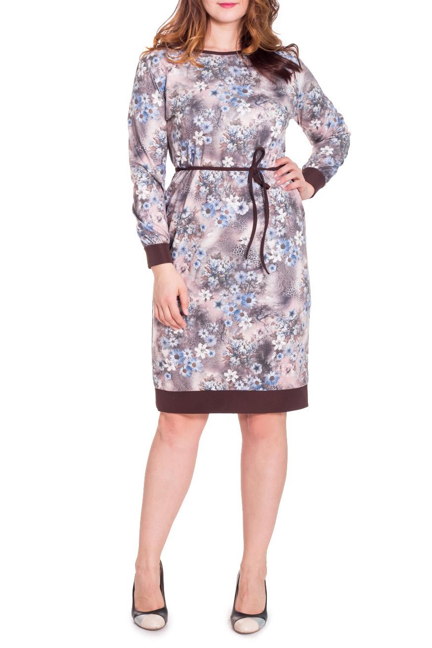 ПлатьеПлатья<br>Чудесное женское платье прямого силуэта с тонким съемным поясом по талии. На спинке средний шов. По низу изделия планка контрастного цвета. Горловина окантована. Рукав рубашечный, длинный, с притачной манжетой. Цвет: коричневый, бежевый, голубой.  Длина рукава - 60 ± 1 см  Рост девушки-фотомодели 180 см  Длина изделия - 109 ± 2 см<br><br>Горловина: С- горловина<br>По длине: Ниже колена<br>По материалу: Трикотаж,Хлопок<br>По образу: Город,Свидание<br>По рисунку: Растительные мотивы,С принтом,Цветные,Цветочные<br>По сезону: Весна,Осень<br>По силуэту: Прямые<br>По стилю: Повседневный стиль<br>По форме: Платье - футляр<br>По элементам: С декором,С манжетами,С поясом<br>Рукав: Длинный рукав<br>Размер : 46,48,50,52,54,56,58<br>Материал: Трикотаж<br>Количество в наличии: 21