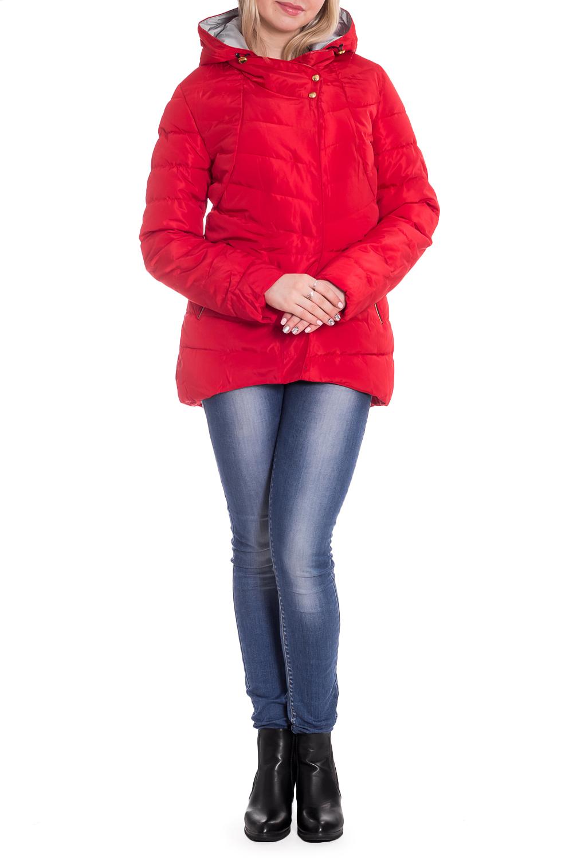 КурткаКуртки<br>Однотонная куртка с длинными рукавами, фигурным подолом и капюшоном. Модель выполнена из плотной болоньи. Отличный выбор для повседневного гардероба.  В изделии использованы цвета: красный  Рост девушки-фотомодели 170 см.<br><br>Застежка: С кнопками,С молнией<br>По длине: Короткие<br>По материалу: Плащевая ткань<br>По рисунку: Однотонные<br>По силуэту: Полуприталенные<br>По стилю: Кэжуал,Молодежный стиль,Повседневный стиль,Спортивный стиль<br>По элементам: С капюшоном,С карманами,С отделочной фурнитурой,С фигурным низом<br>Рукав: Длинный рукав<br>По сезону: Осень,Весна<br>Размер : 42<br>Материал: Болонья<br>Количество в наличии: 1