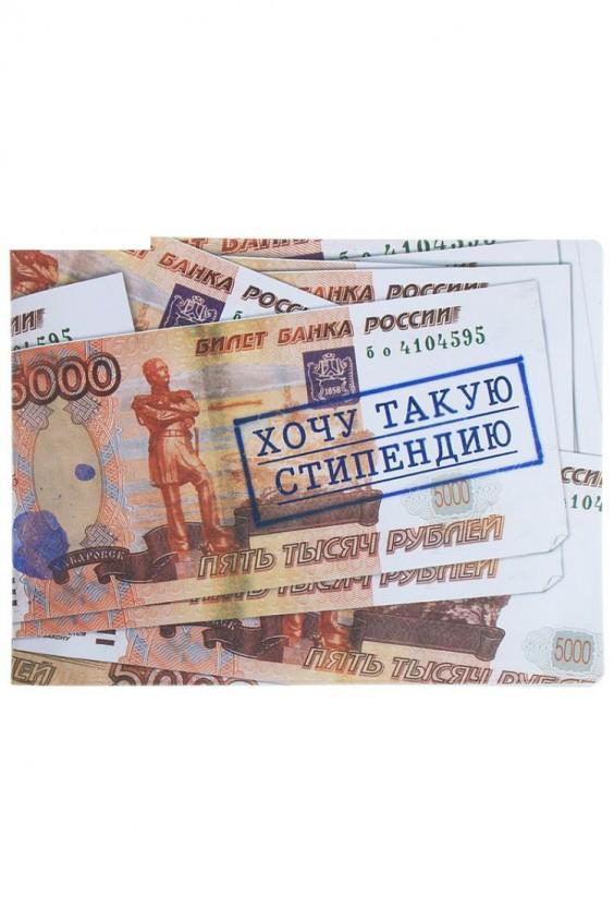 Обложка Российское швейное производство LacyWear 48.000