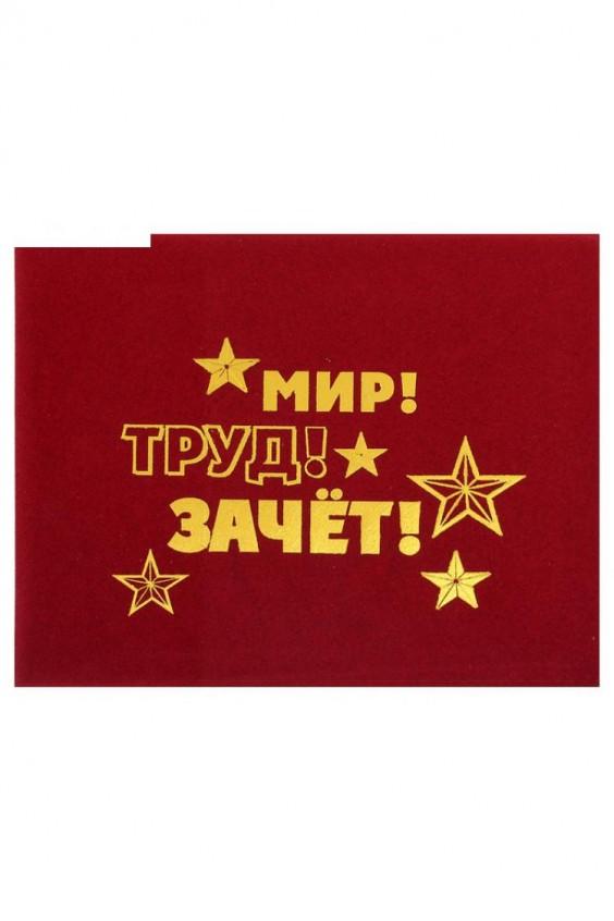 Обложка Российское швейное производство LacyWear 38.000